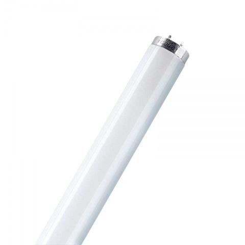 Žiarivka OSRAM L36W/840 120cm studená bílá