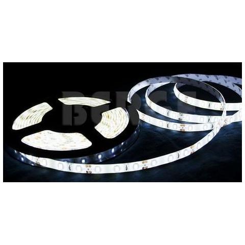 5m bal. LED pásik 60 SMD5630 19W/m - studená biela IP65